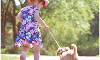 犬と夏休み旅行!関西のおすすめスポット5選!穴場はどこ?