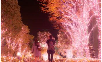 冬のおすすめデートスポット関東編!暖かくて人気のある場所は?